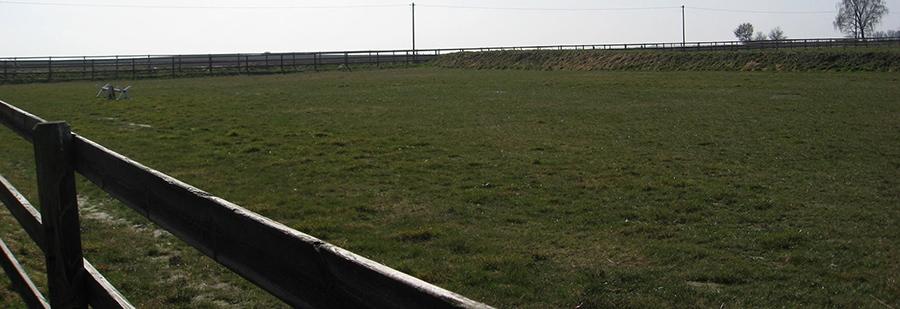 Rasenplätze & Zaunbau